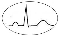 ecg-leads-2-sinus-rythm-jpg