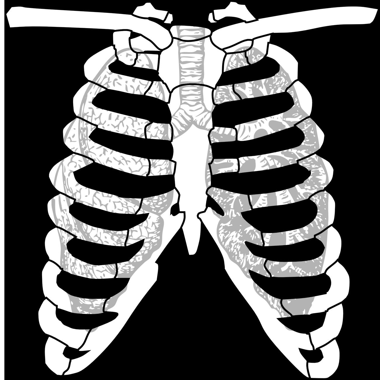 lungs-cavity